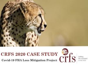 Thumbnail of FHA Loss Mitigation Brochure